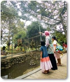 Taman Botani Sukorambi