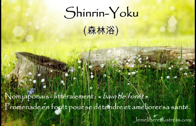Définition du Shinrin-Yoku