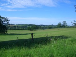 view across the Wensum valley