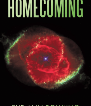 Book Review   Homecoming by Sue Ann Bowling