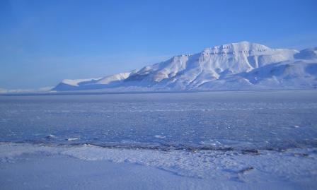 #FridayFlash Fiction | The Green Green Grass of Svalbard