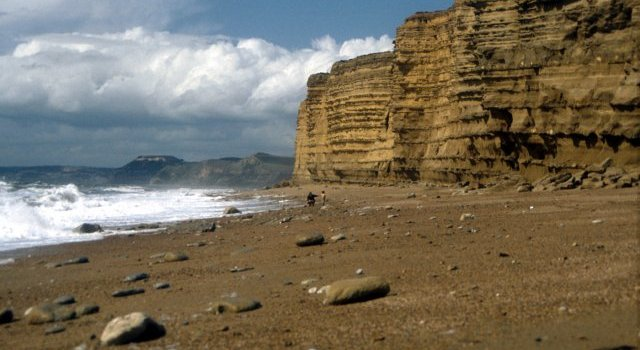 Jurassic Coast (and the other half of a book review)