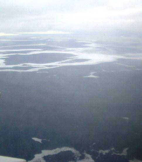 sea ice off svalbard