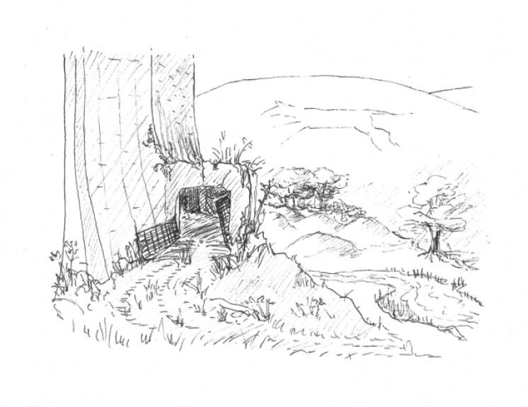 illustrations-white-horse-broken