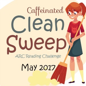 Wrap-up post #CleanSweepARC 2017