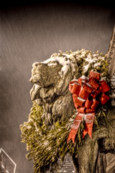 Chicago Art Institute Lions with Christmas Wreath: 3