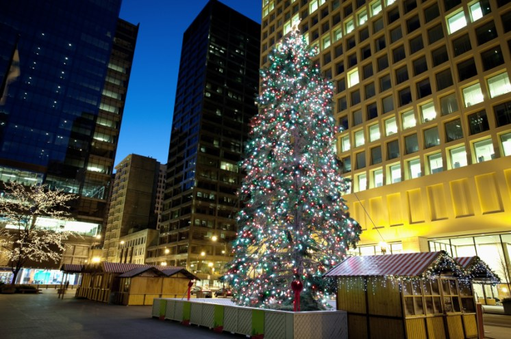 Chicago Christmas Tree at Daley Plaza