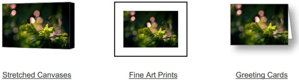 Sprout On Fire on Fine Art America