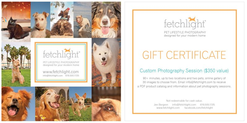 Gift Certificate, 5×5, Front and Back, for Fetchlight