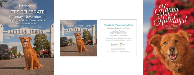 Event Invitation and Promo Cards (left), Holiday Card Magnet (right) for Fetchlight