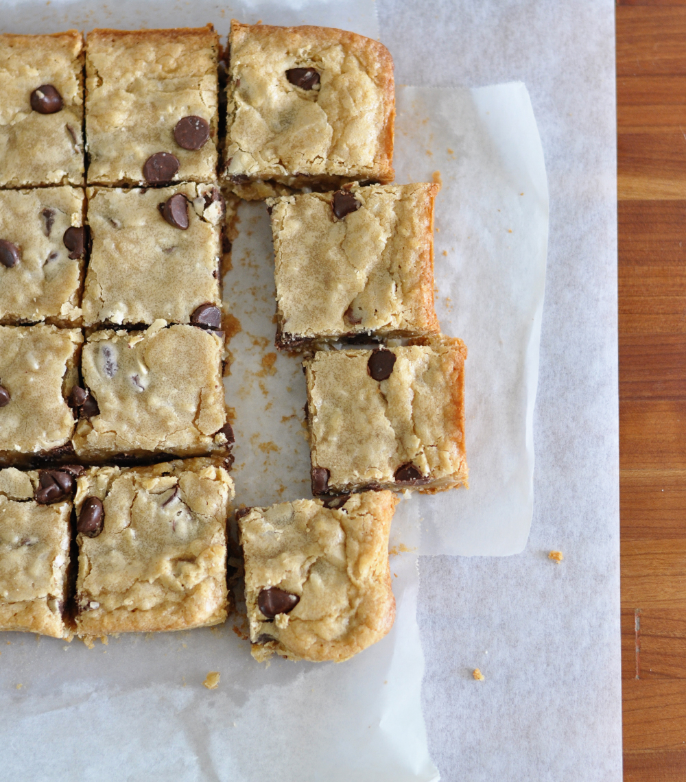 dark chocolate chip coconut blondies