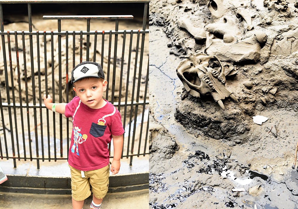 some highlights from our family trip to Los Angeles: La Brea Tar Pits