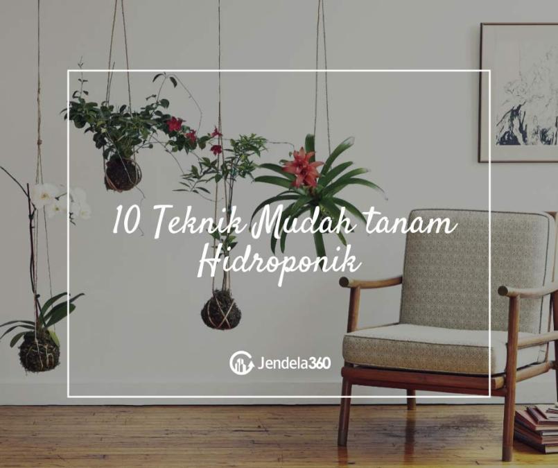 10 Teknik Mudah Hidroponik, Nomor 2 Cocok Untuk Apartemen!