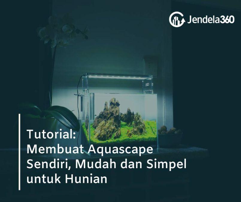 Tutorial: Perindah Hunian Anda dengan Aquascape Buatan Sendiri, Mudah dan Simpel!