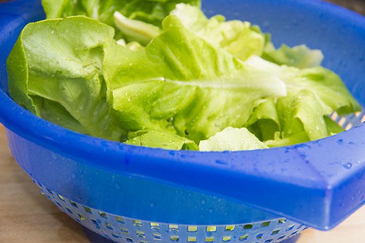 rinsing-bibb-lettuc