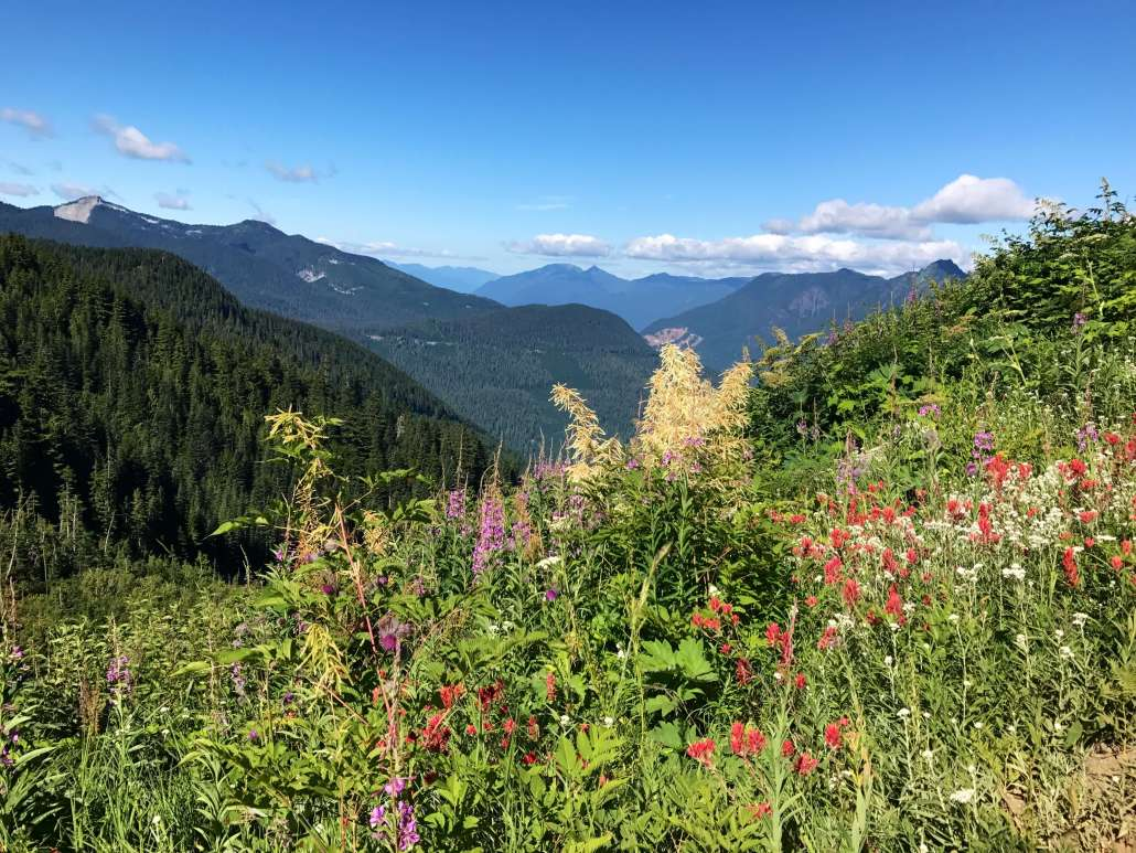 Best hike in the North Cascades National Park - Hidden Lake Lookout