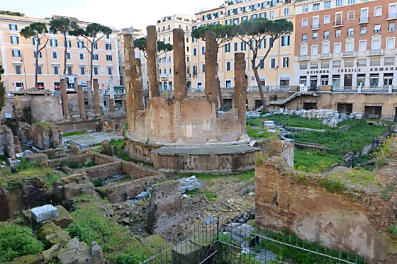 Where the Curia of Pompey used to be, behind the ruins of Temples B and C at Area Sacra di Largo Argentina