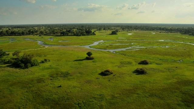 A ribbon of water through the Okavango Delta.