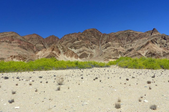 White sand, green shrubs, rocky mountains.