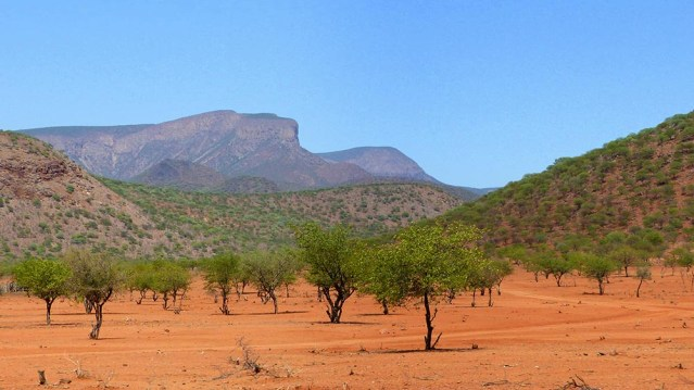 Red sand, rocky hills, no understory