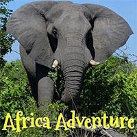 Africa Journal, Jen Funk Weber