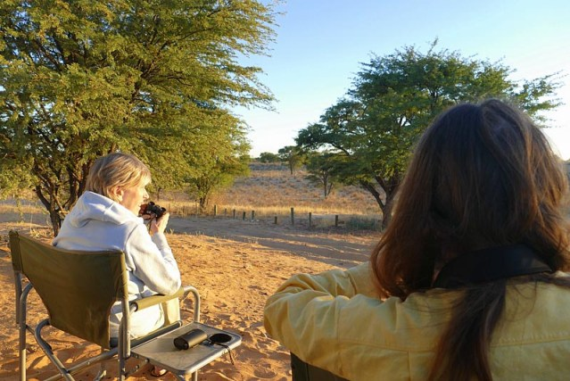 Watching lions move away - Kgalagadi Transfrontier Park, photo by Mike Weber