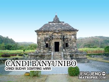 Candi Banyunibo, Candi Budha Sebatang Kara