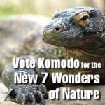 Vote Komodo for the New 7 Wonders of Nature