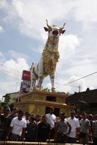 Patung Lembu megah pengiring Pelebon