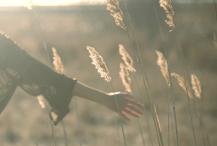 6 Steps to Find Peace After Divorce