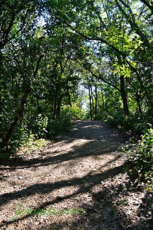 Trail Watermarked