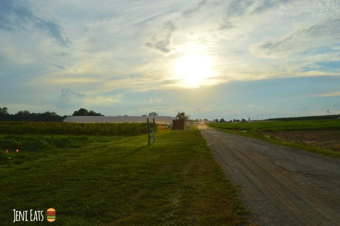 farm horizen