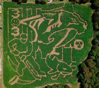 Nashville-Predators-Corn-Maze-1