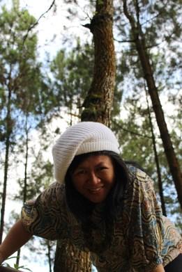 Lihatlah pepohonan menjulang tinggi, betapa lebih tinggi lagi kasih Tuhan dalam hidup kita, tiada terukur kasih setia-Nya.