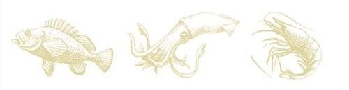seafood-illustrations