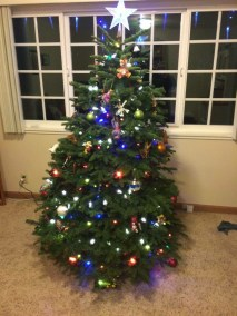 Moser Family Tree