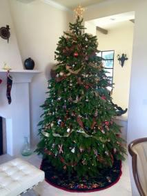 nordman tree