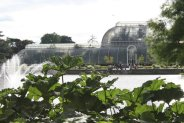 Kew Gardem7