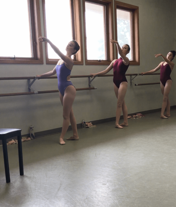 homeschool curriculum elective ballet