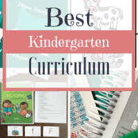 The Best Curriculum for Kindergarten