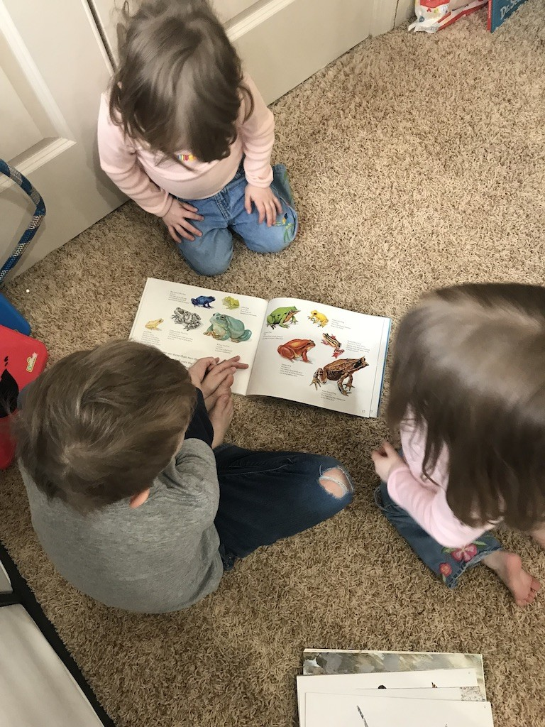 Homeschooling multiple ages can be a bit tricky, but using unit studies has helped me keep things both simple and individualized for my children.
