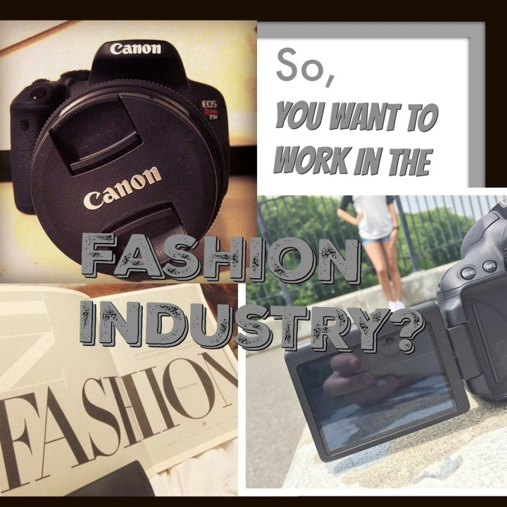 So You Want To Work In The Fashion Industry?