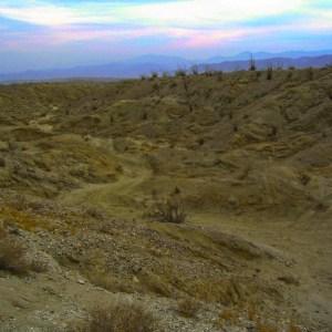 Desert Road - IMG_1685