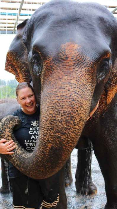 The elephant liked Suz's Game of thrones t-shirt
