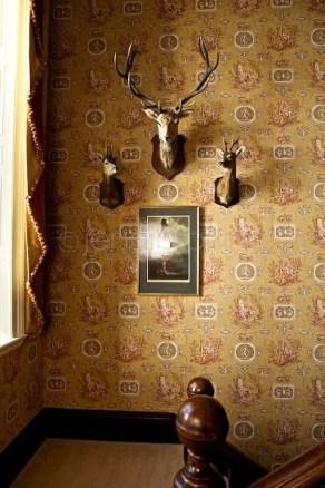 scottish interior photography | jenni browne _ 181
