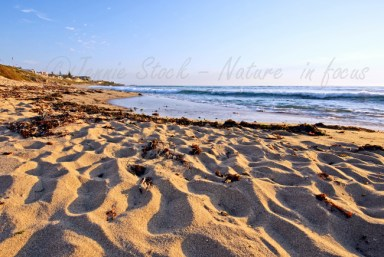 North Beach seascape