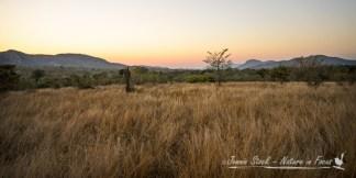 Berg-en-dal sunrise