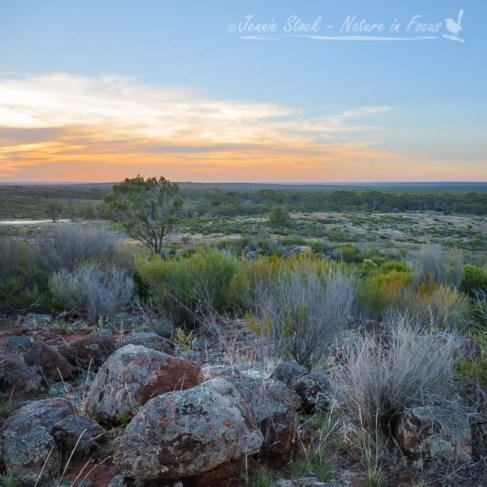 Sunset from the hill above the station house at Fraser Range