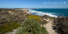 Ocean view from Coffin Bay NP