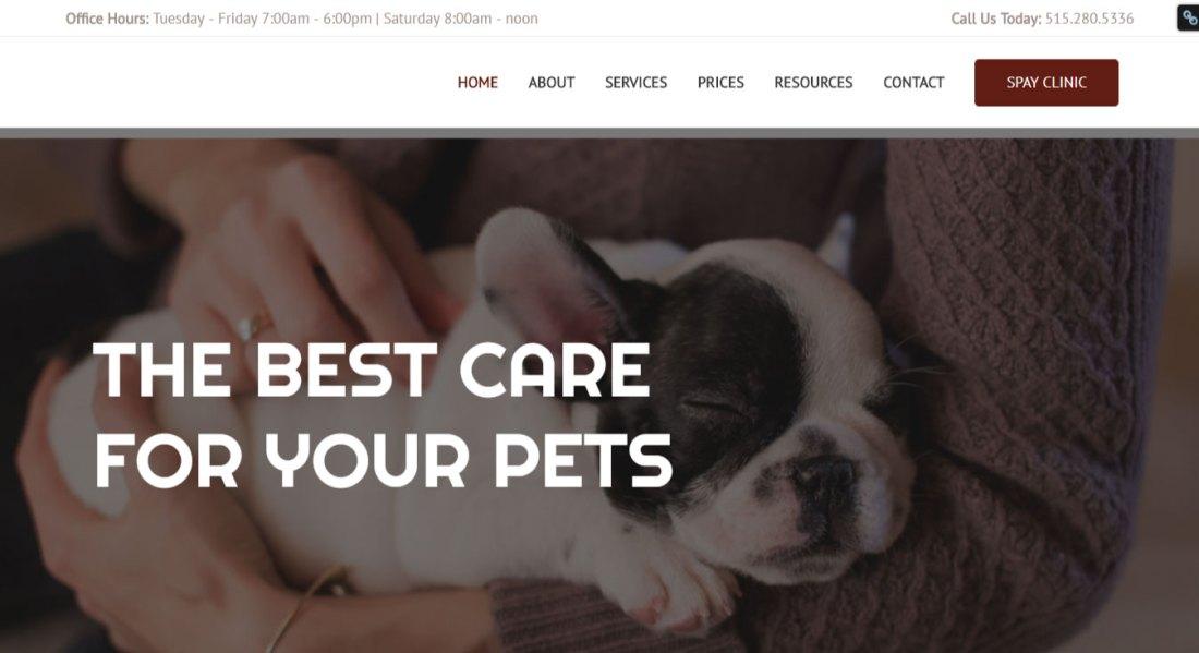 WordPress Website Design | Jennifer Franklin Portfolio | Veterinary Website Design | Jennifer-Franklin.com